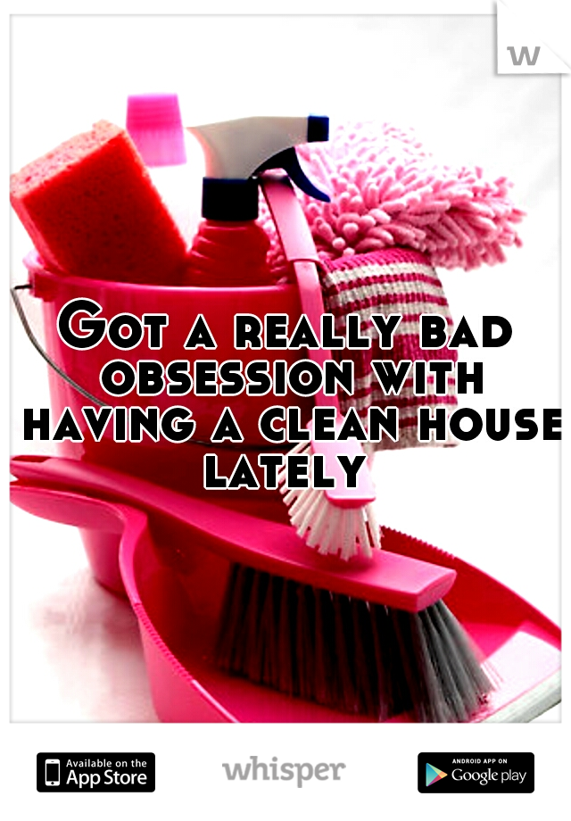 Got a really bad obsession with having a clean house lately