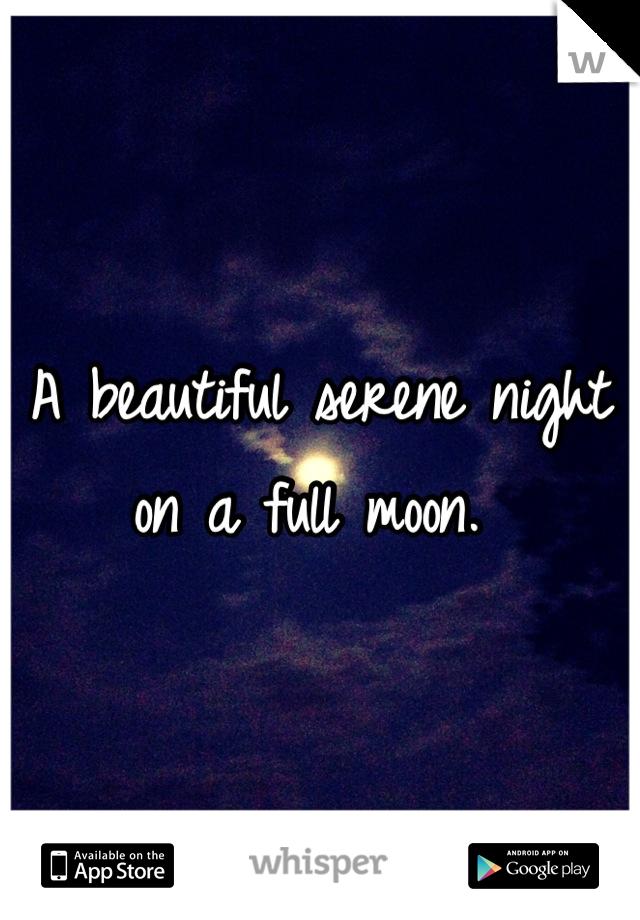 A beautiful serene night on a full moon.
