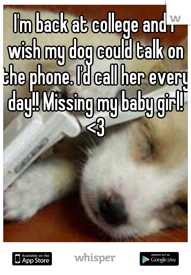 I'm back at college and I wish my dog could talk on the phone. I'd call her every day!! Missing my baby girl! <3