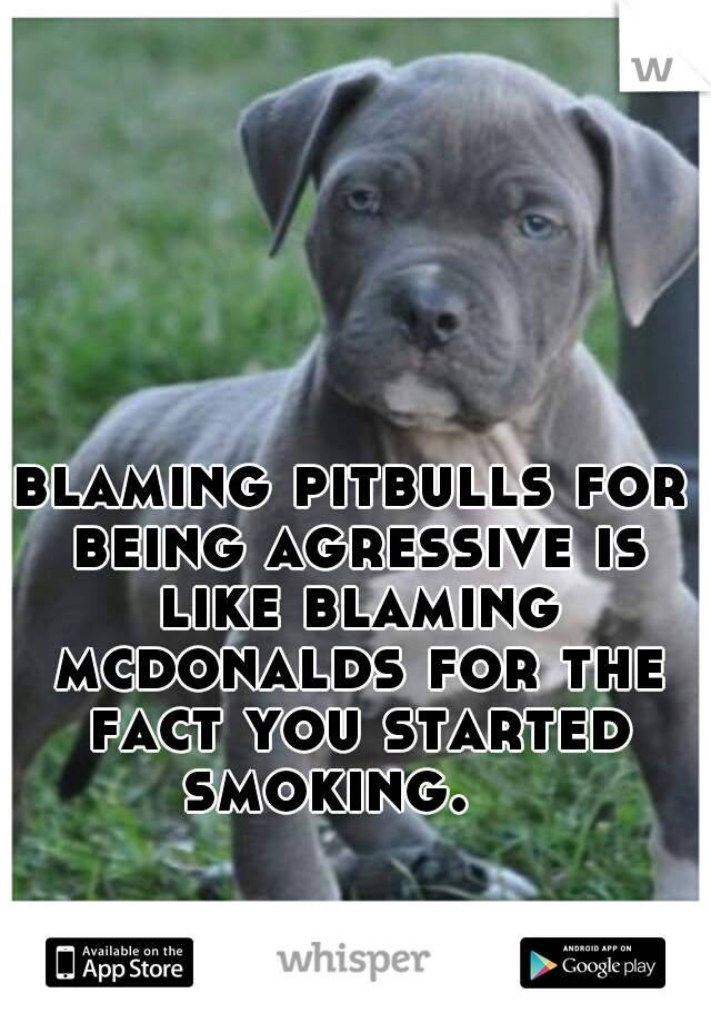 blaming pitbulls for being agressive is like blaming mcdonalds for the fact you started smoking.