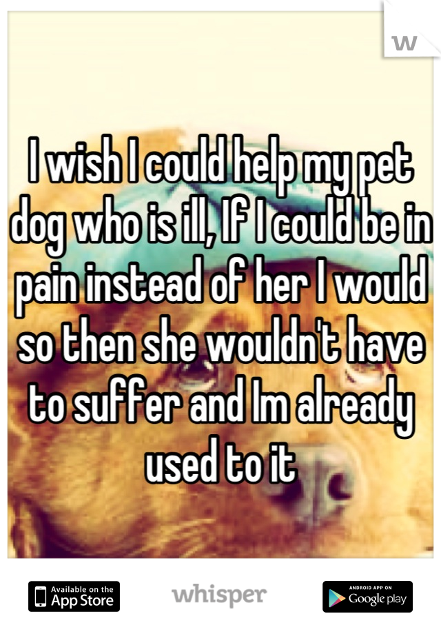 I wish I could help my pet dog who is ill, If I could be in pain instead of her I would so then she wouldn't have to suffer and Im already used to it