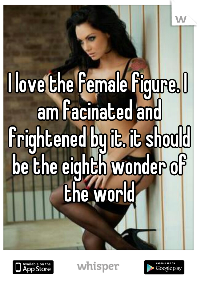 I love the female figure. I am facinated and frightened by it. it should be the eighth wonder of the world