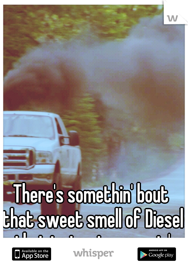 There's somethin' bout that sweet smell of Diesel that just gets me goin'
