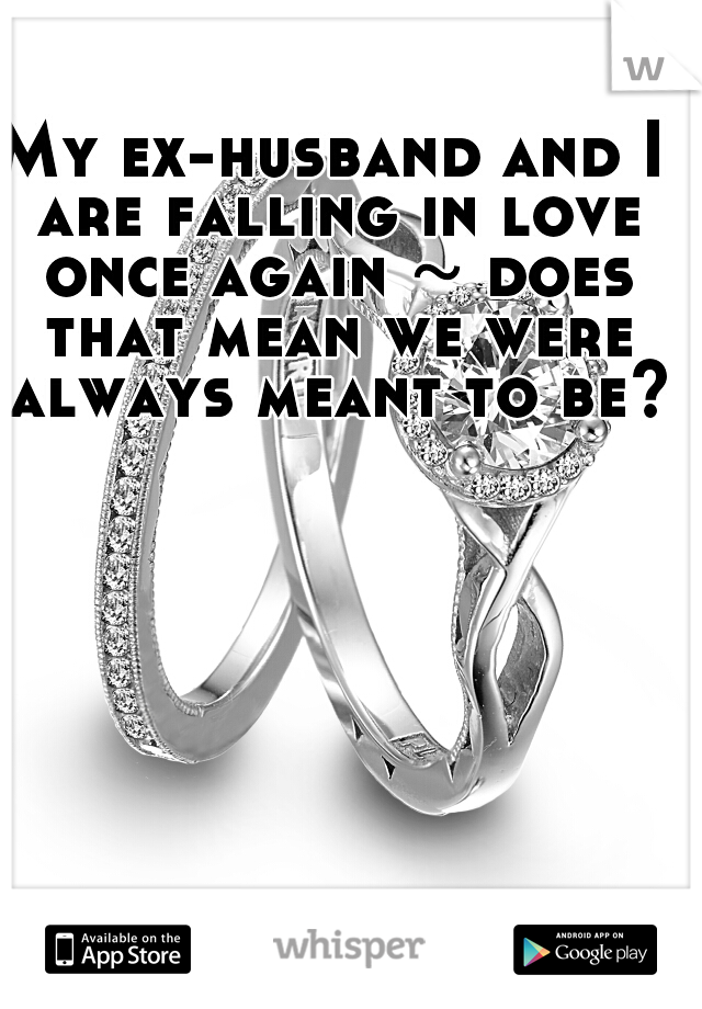 My ex-husband and I are falling in love once again ~ does that mean we were always meant to be?