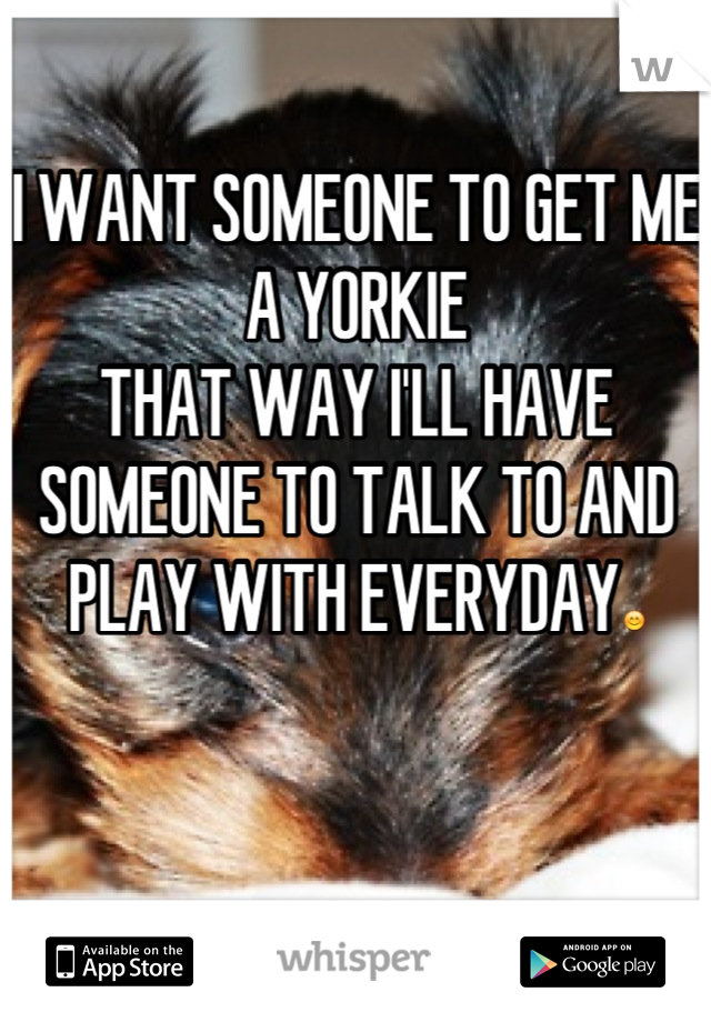 I WANT SOMEONE TO GET ME A YORKIE THAT WAY I'LL HAVE SOMEONE TO TALK TO AND PLAY WITH EVERYDAY😊
