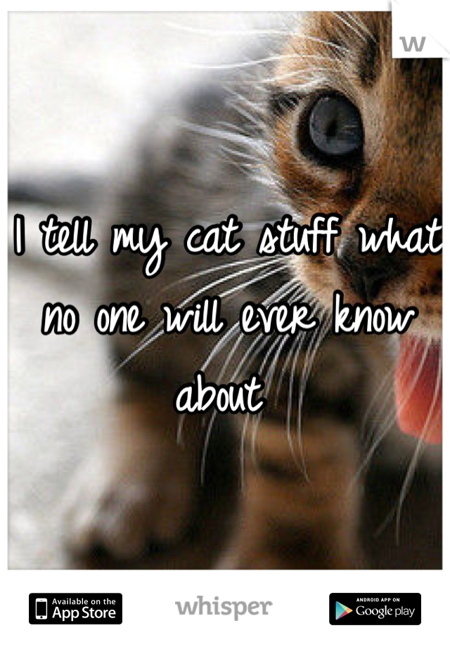 I tell my cat stuff what no one will ever know about