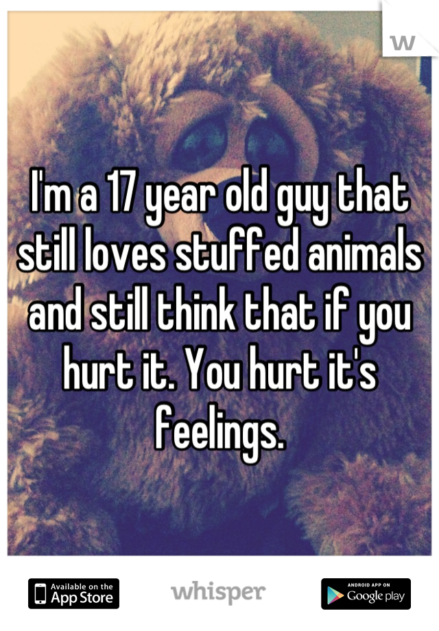 I'm a 17 year old guy that still loves stuffed animals and still think that if you hurt it. You hurt it's feelings.