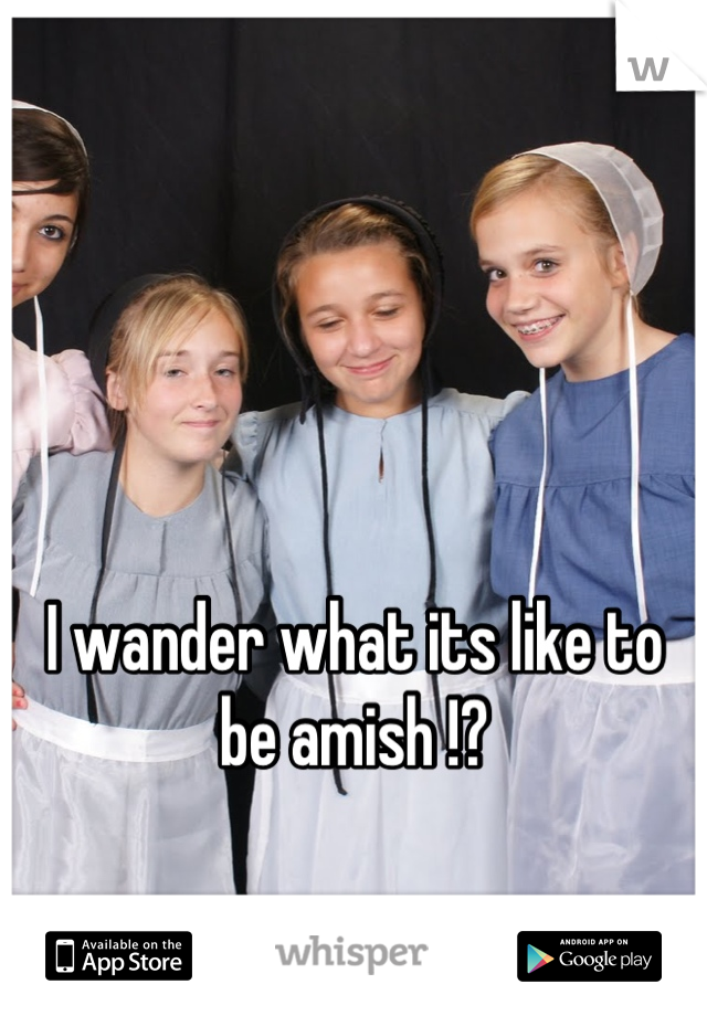 I wander what its like to be amish !?