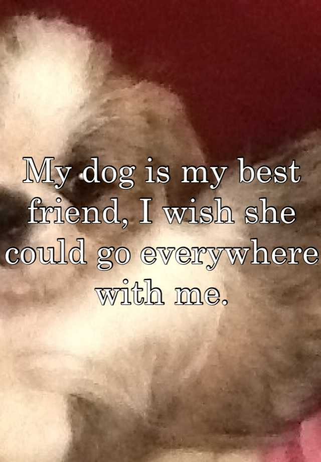 my dog my best friend Pet friend poems email we had to put her to sleep on february 17, 2015 i loved her she was my best friend she was the best dog ever i miss her to death one.