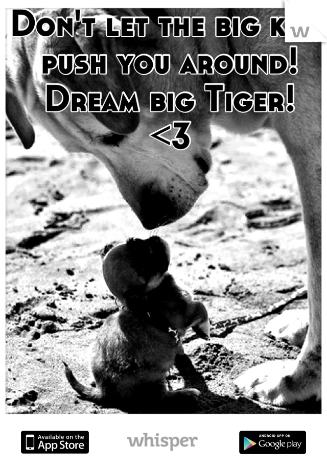Don't let the big kids push you around! Dream big Tiger! <3