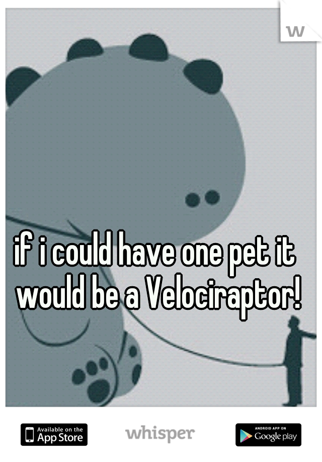 if i could have one pet it would be a Velociraptor!