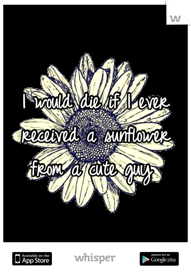 I would die if I ever received a sunflower from a cute guy