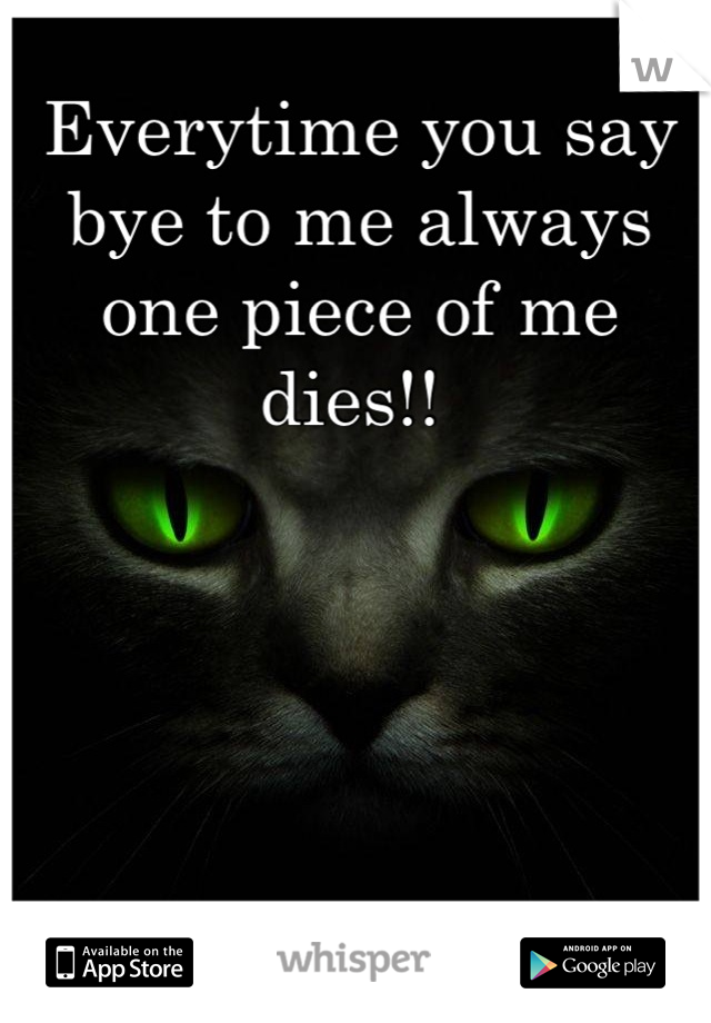 Everytime you say bye to me always one piece of me dies!!