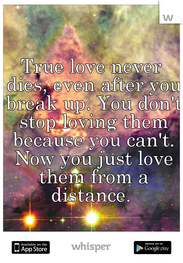 True love never dies, even after you break up. You don't stop loving them because you can't. Now you just love them from a distance.