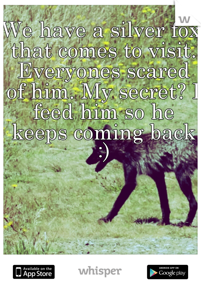 We have a silver fox that comes to visit. Everyones scared of him. My secret? I feed him so he keeps coming back :)