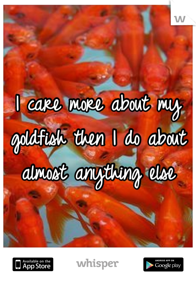 I care more about my goldfish then I do about almost anything else