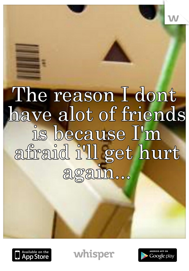 The reason I dont have alot of friends is because I'm afraid i'll get hurt again...