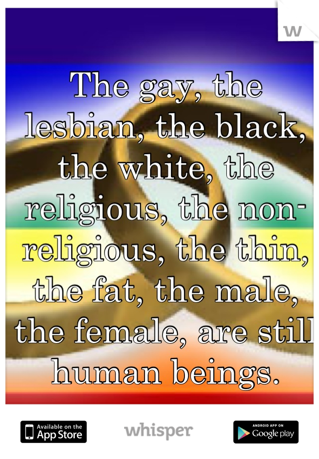 The gay, the lesbian, the black, the white, the religious, the non-religious, the thin, the fat, the male, the female, are still human beings.