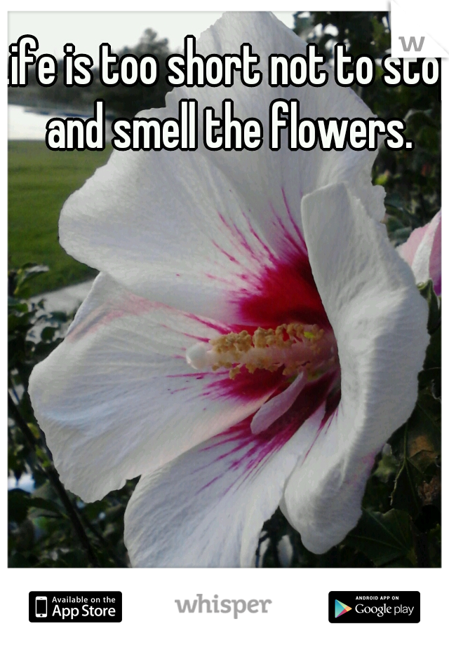 Life is too short not to stop and smell the flowers.