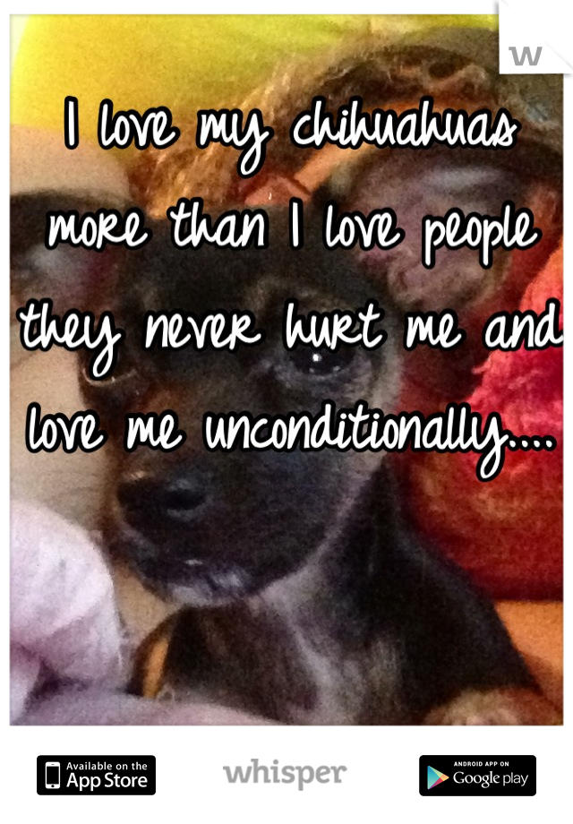 I love my chihuahuas more than I love people they never hurt me and love me unconditionally....