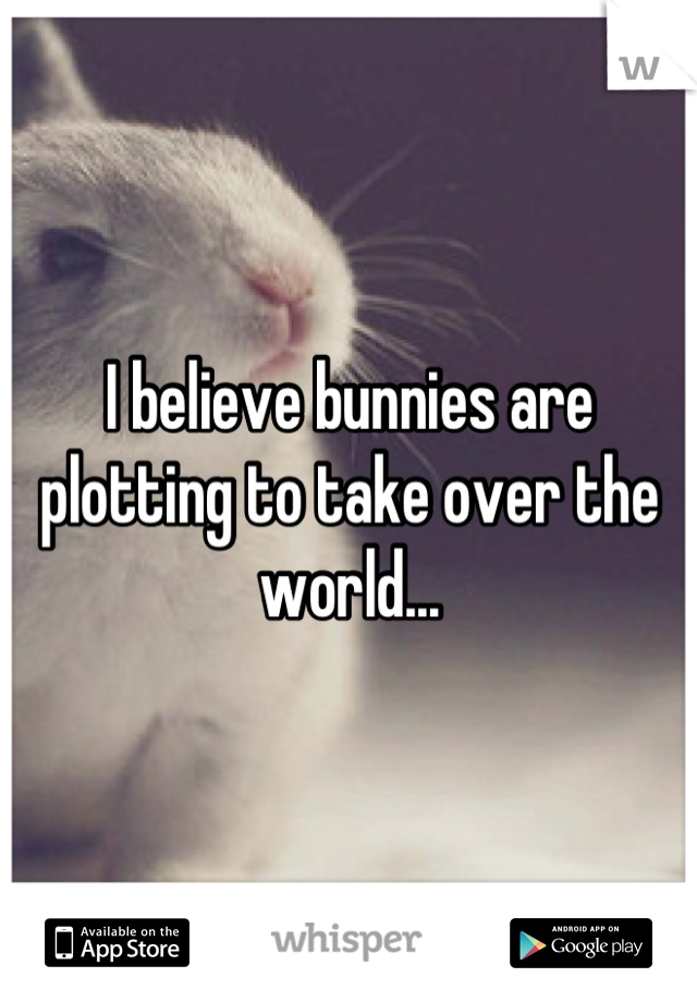 I believe bunnies are plotting to take over the world...