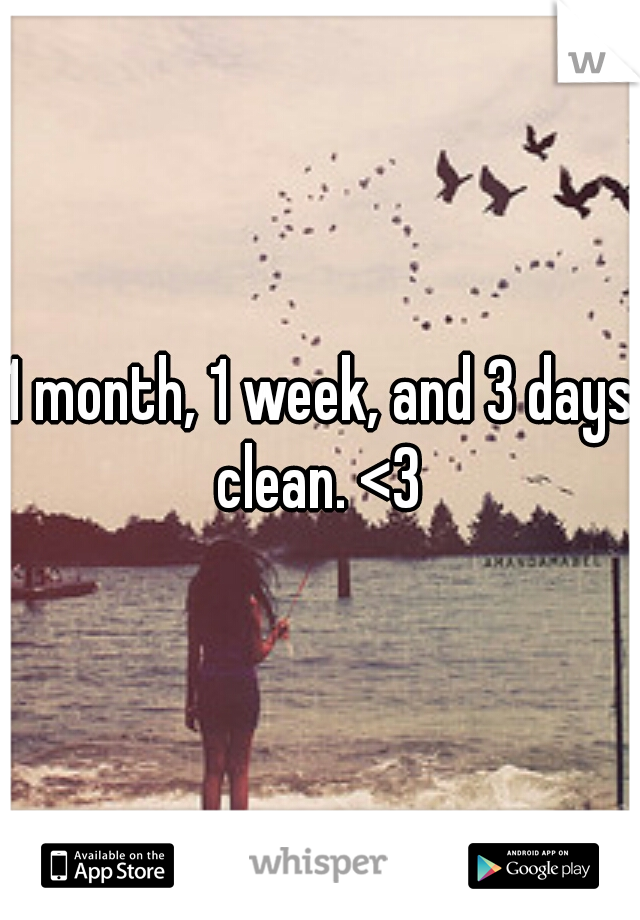 1 month, 1 week, and 3 days clean. <3