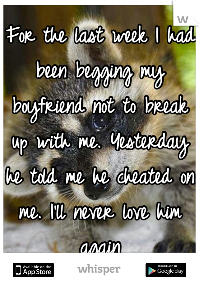 For the last week I had been begging my boyfriend not to break up with me. Yesterday he told me he cheated on me. I'll never love him again
