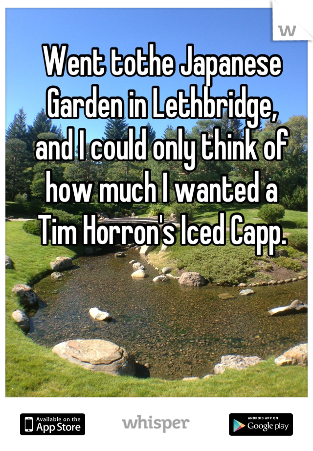 Went tothe Japanese Garden in Lethbridge,  and I could only think of  how much I wanted a  Tim Horron's Iced Capp.