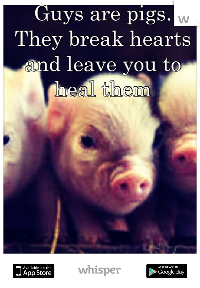 Guys are pigs. They break hearts and leave you to heal them