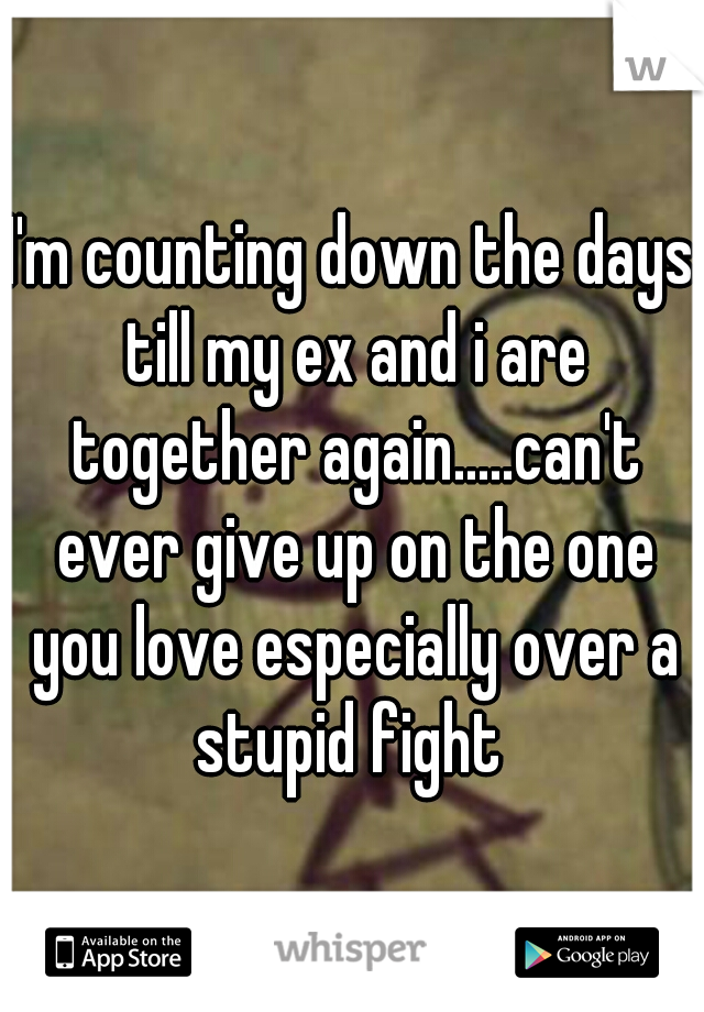 I'm counting down the days till my ex and i are together again.....can't ever give up on the one you love especially over a stupid fight