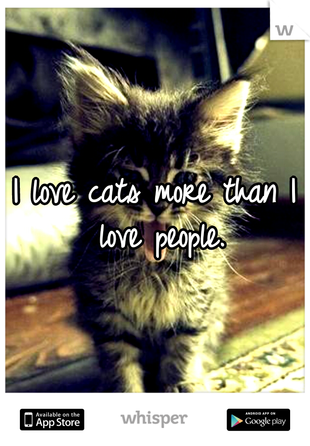 I love cats more than I love people.