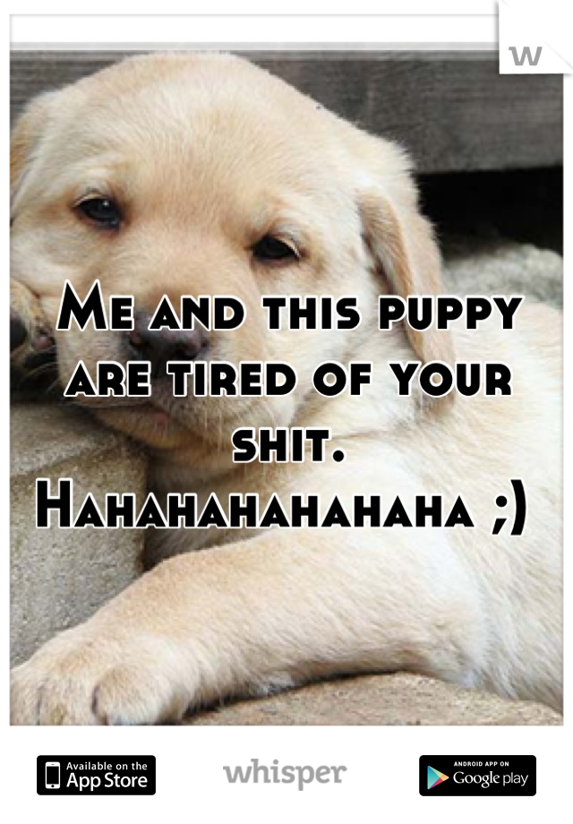 Me and this puppy are tired of your shit. Hahahahahahaha ;)