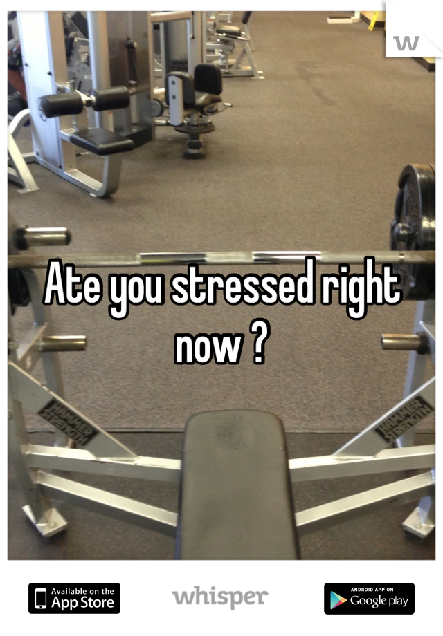 Ate you stressed right now ?