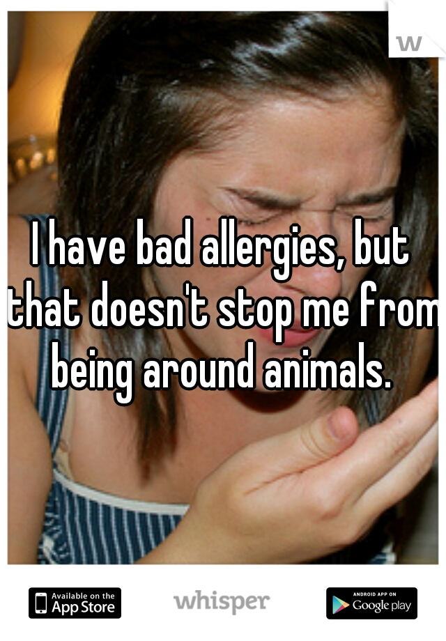 I have bad allergies, but that doesn't stop me from being around animals.