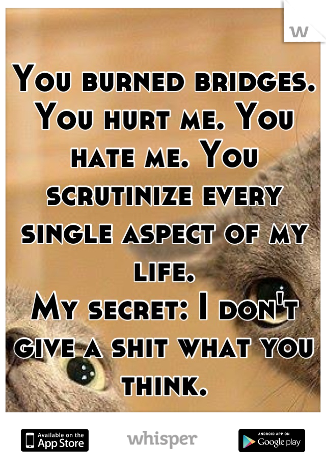 You burned bridges. You hurt me. You hate me. You scrutinize every single aspect of my life. My secret: I don't give a shit what you think.