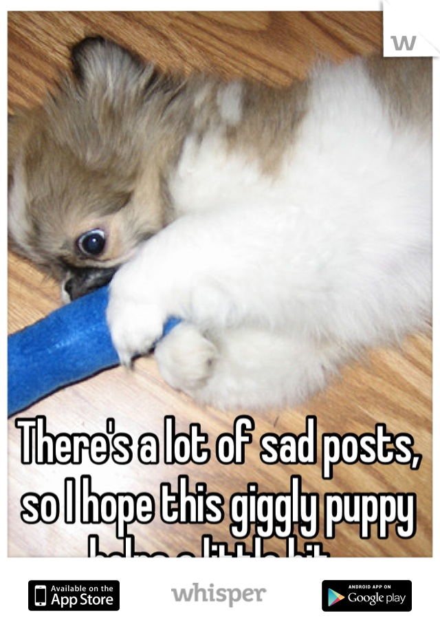 There's a lot of sad posts, so I hope this giggly puppy helps a little bit.