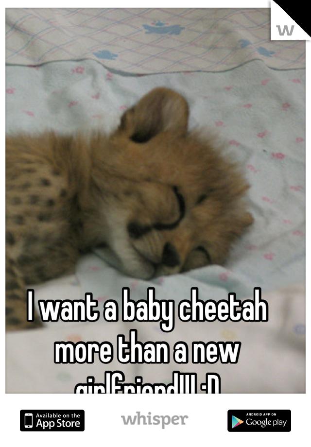 I want a baby cheetah more than a new girlfriend!!! :D