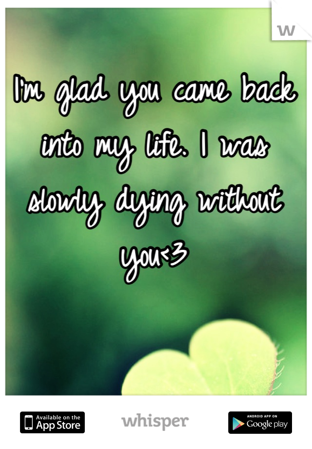 I'm glad you came back into my life. I was slowly dying without you<3