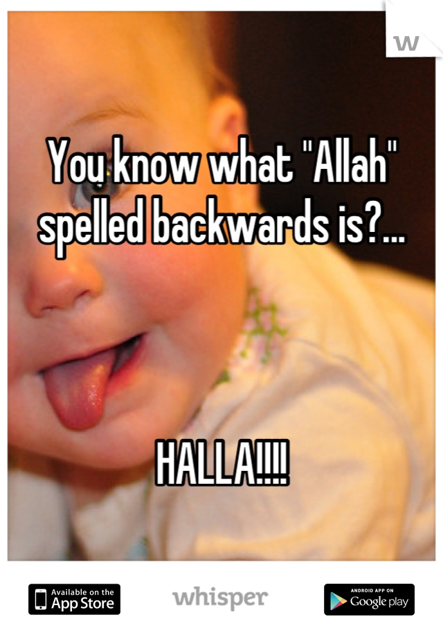 """You know what """"Allah"""" spelled backwards is?...    HALLA!!!!"""