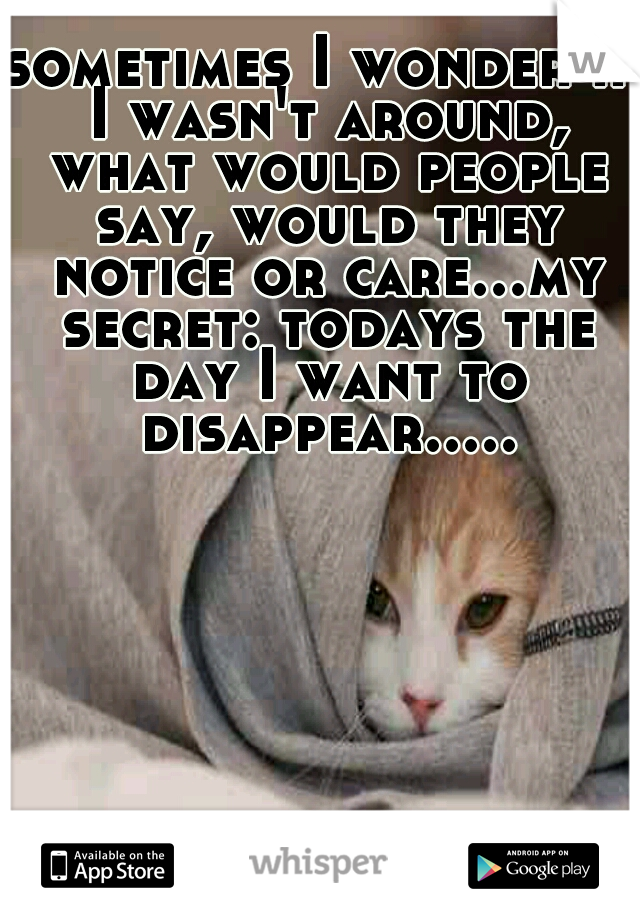 sometimes I wonder if I wasn't around, what would people say, would they notice or care...my secret: todays the day I want to disappear.....