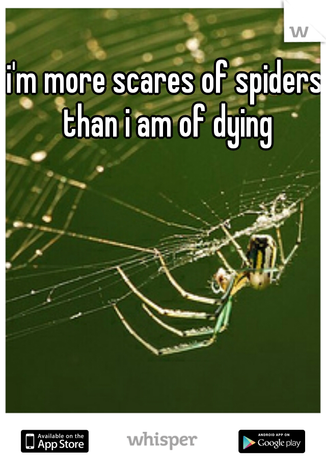 i'm more scares of spiders than i am of dying