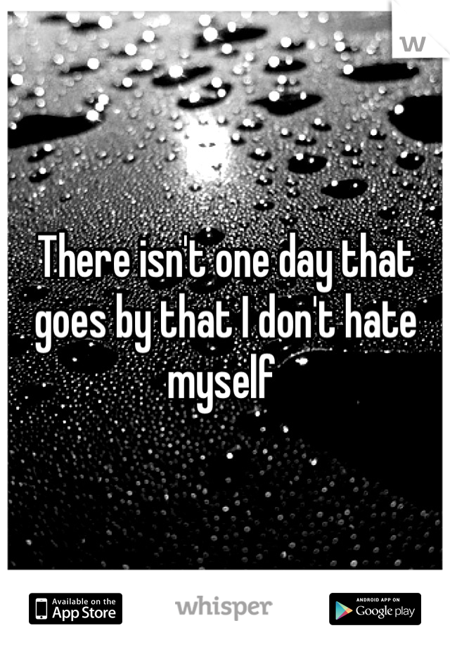 There isn't one day that goes by that I don't hate myself