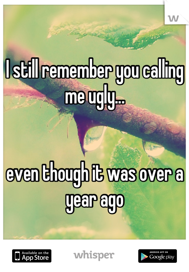 I still remember you calling me ugly...   even though it was over a year ago