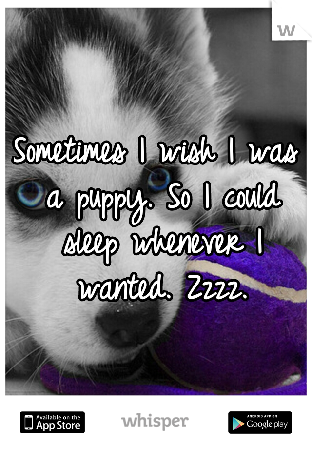 Sometimes I wish I was a puppy. So I could sleep whenever I wanted. Zzzz.