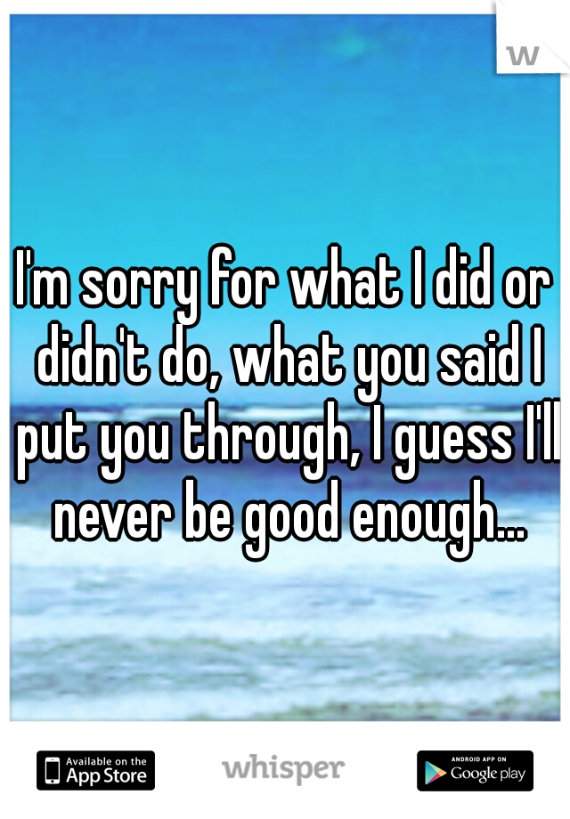 I'm sorry for what I did or didn't do, what you said I put you through, I guess I'll never be good enough...