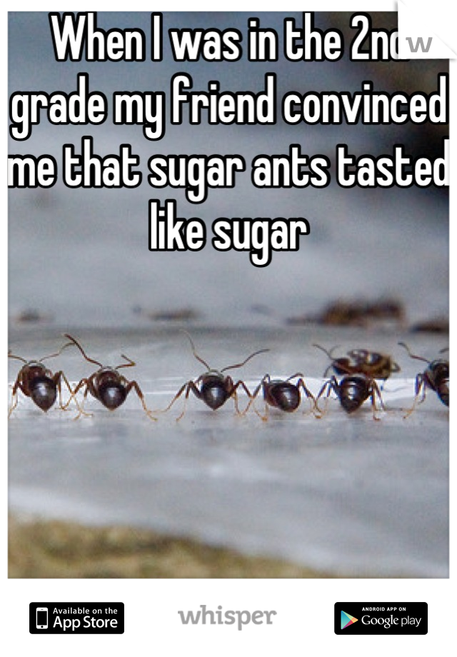 When I was in the 2nd grade my friend convinced me that sugar ants tasted like sugar      I ate one.