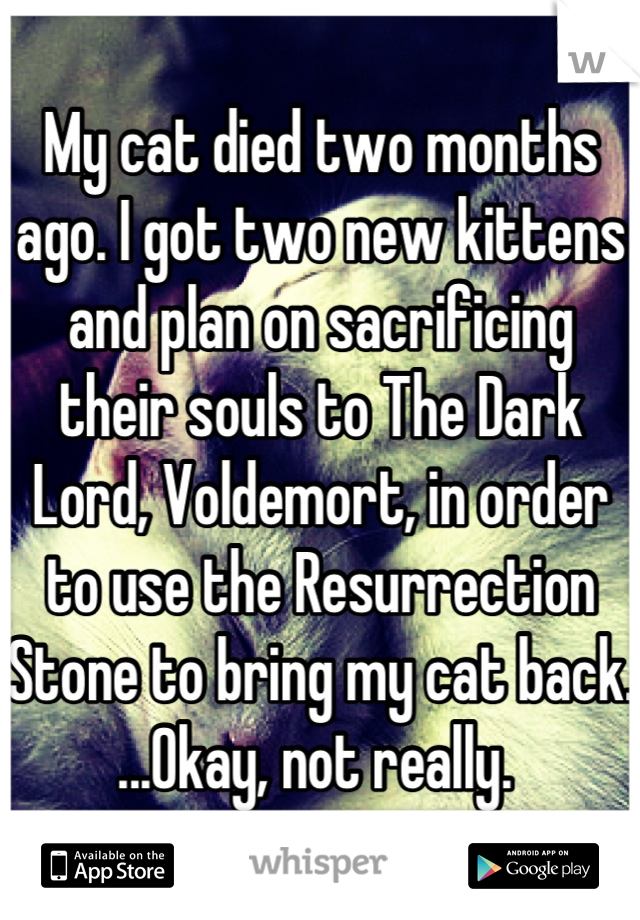 My cat died two months ago. I got two new kittens and plan on sacrificing their souls to The Dark Lord, Voldemort, in order to use the Resurrection Stone to bring my cat back. ...Okay, not really.