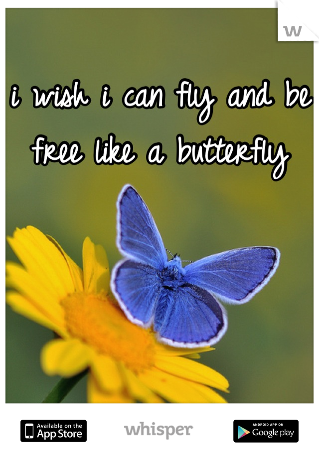 i wish i can fly and be free like a butterfly