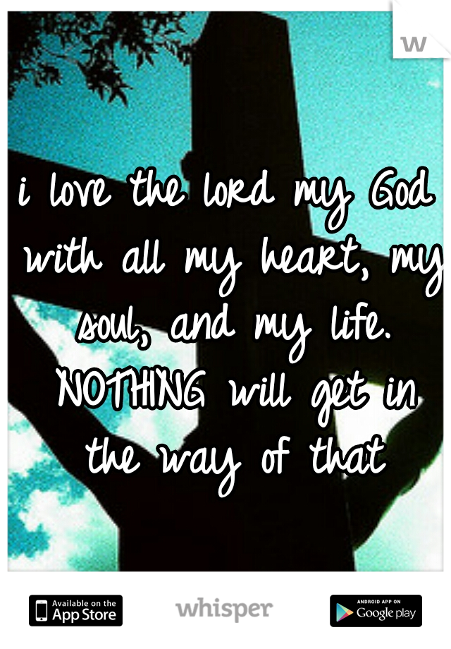 i love the lord my God with all my heart, my soul, and my life. NOTHING will get in the way of that