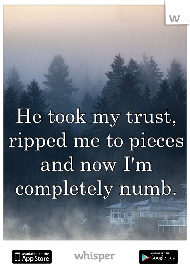 He took my trust, ripped me to pieces and now I'm completely numb.